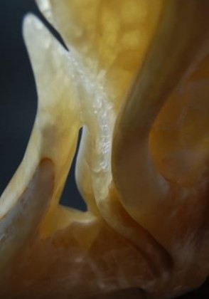 sculpture-onyx-art-12